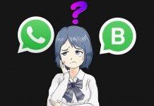Differenze tra WhatsApp e WhatsApp Business, quale è migliore?