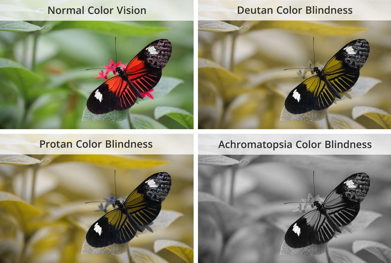 tipi di daltonismo